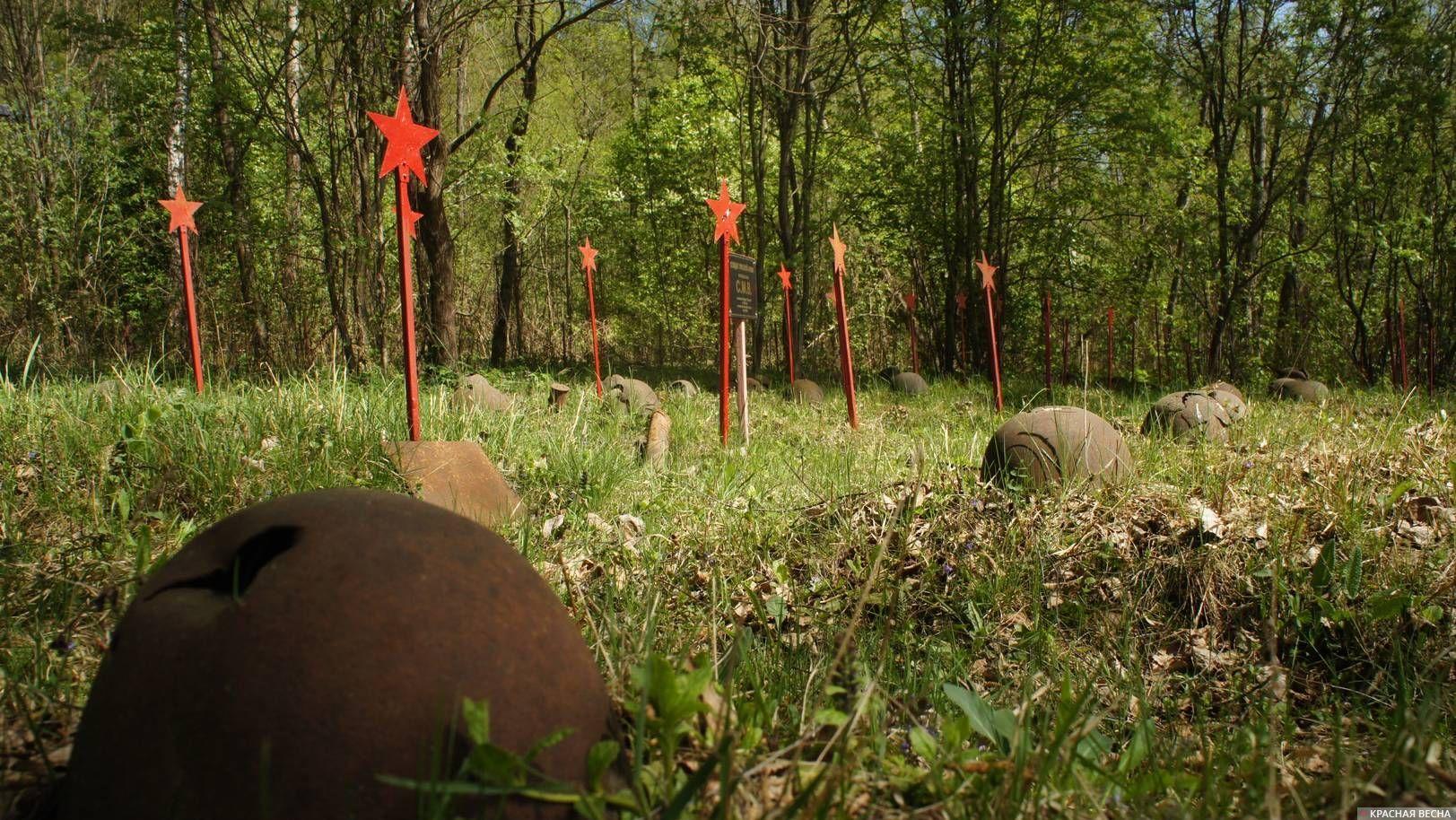 Кладбище советских солдат в лесу. Смоленская область.