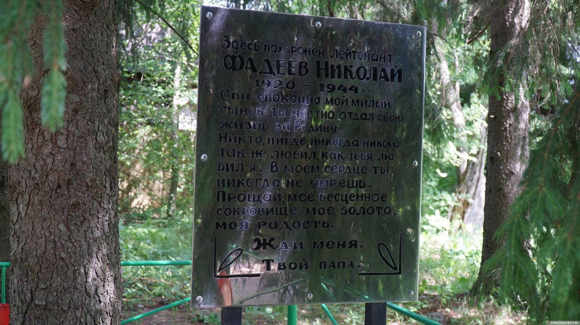 На братской могиле советских воинов №9. Ленобласть. 12.06.2019