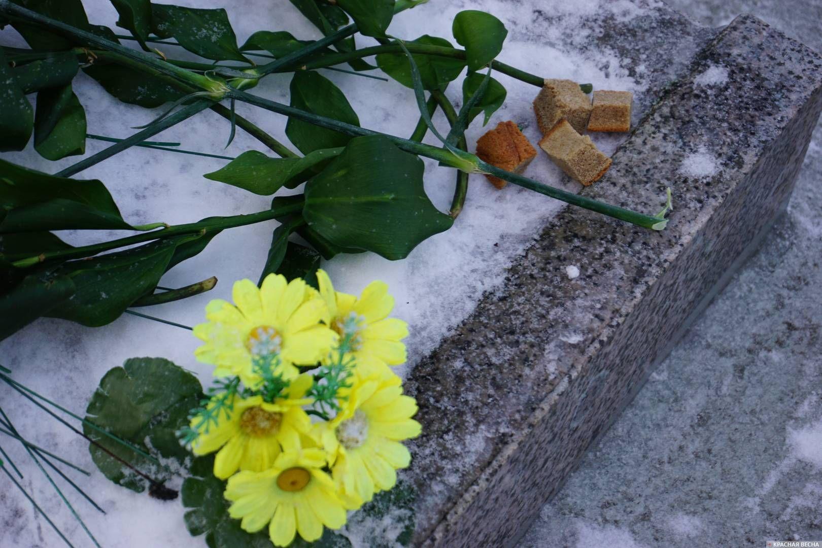 Кусочки хлеба на могиле павших защитников Ленинграда. 27.01.2019