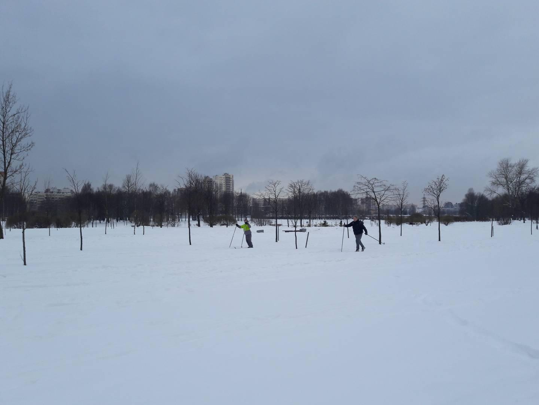 Лыжники в Муринском парке, Санкт-Петербург