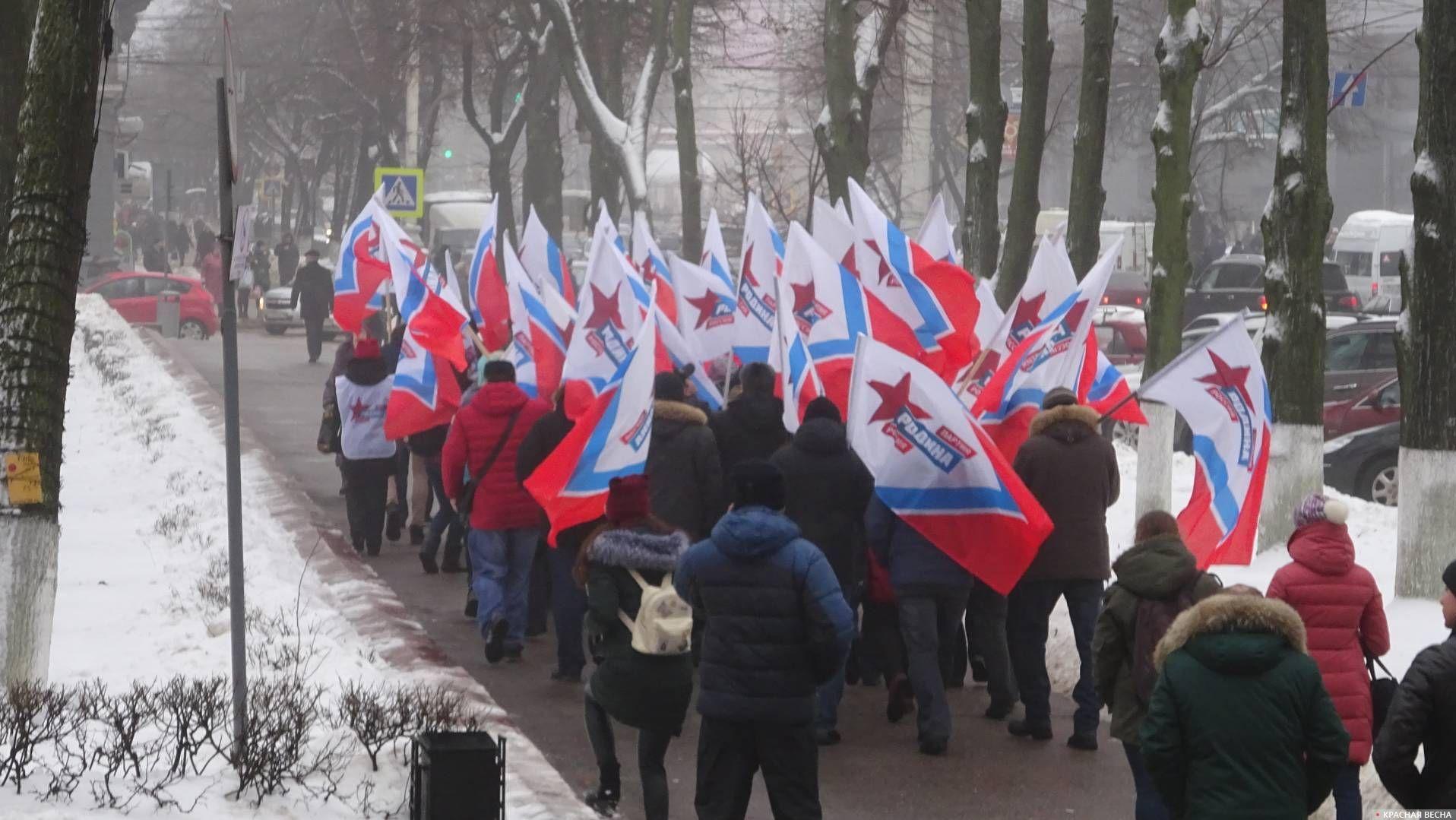 Митинг в Воронеже, 2018