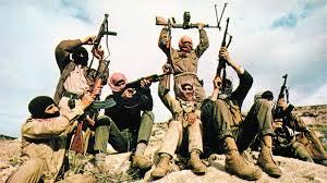 Боевики в Палестине, 1969 год