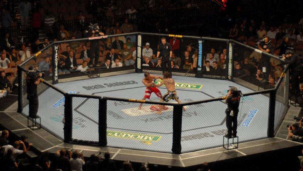 Бой матча UFC
