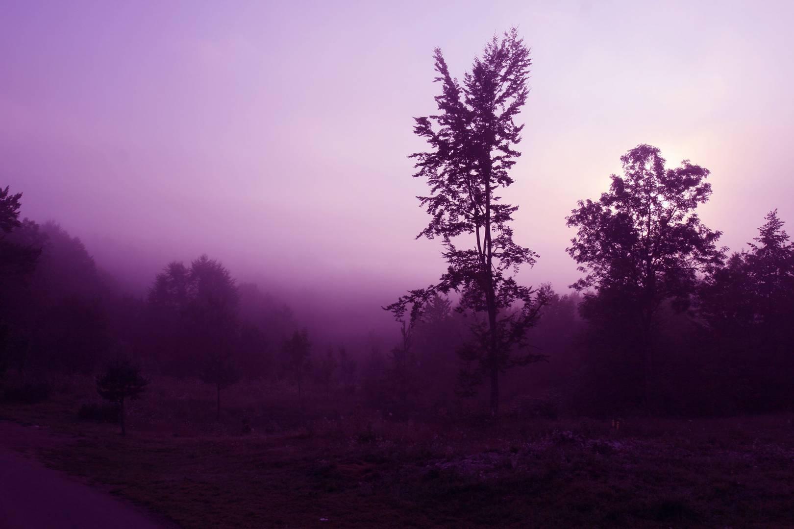 Фиолетовые лучи