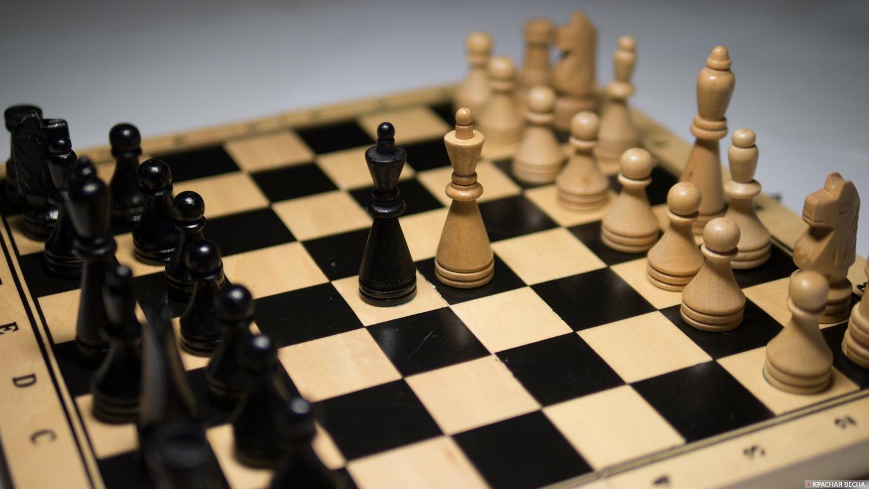 Шахматы [Антон Привальский © ИА Красная Весна]