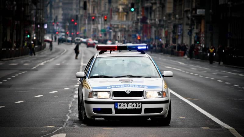 Венгерская полиция на митинге .Будапешт.