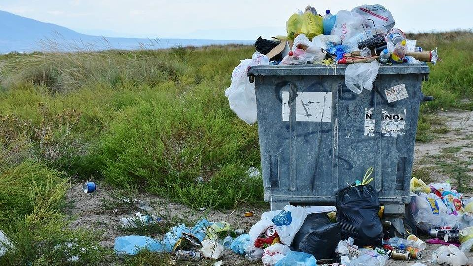 Агрессия пластикового мусора