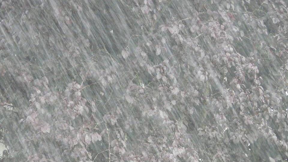 Ливень, стена воды