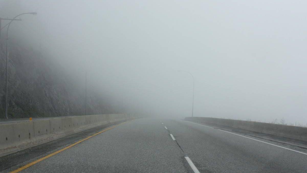 Пустая дорога в тумане