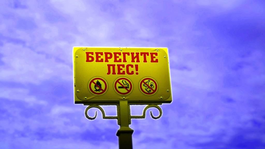 Площадь лесных пожаров вСибири увеличилась втрое