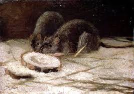 Винсент Ван Гог «Две крысы» 1884 г.