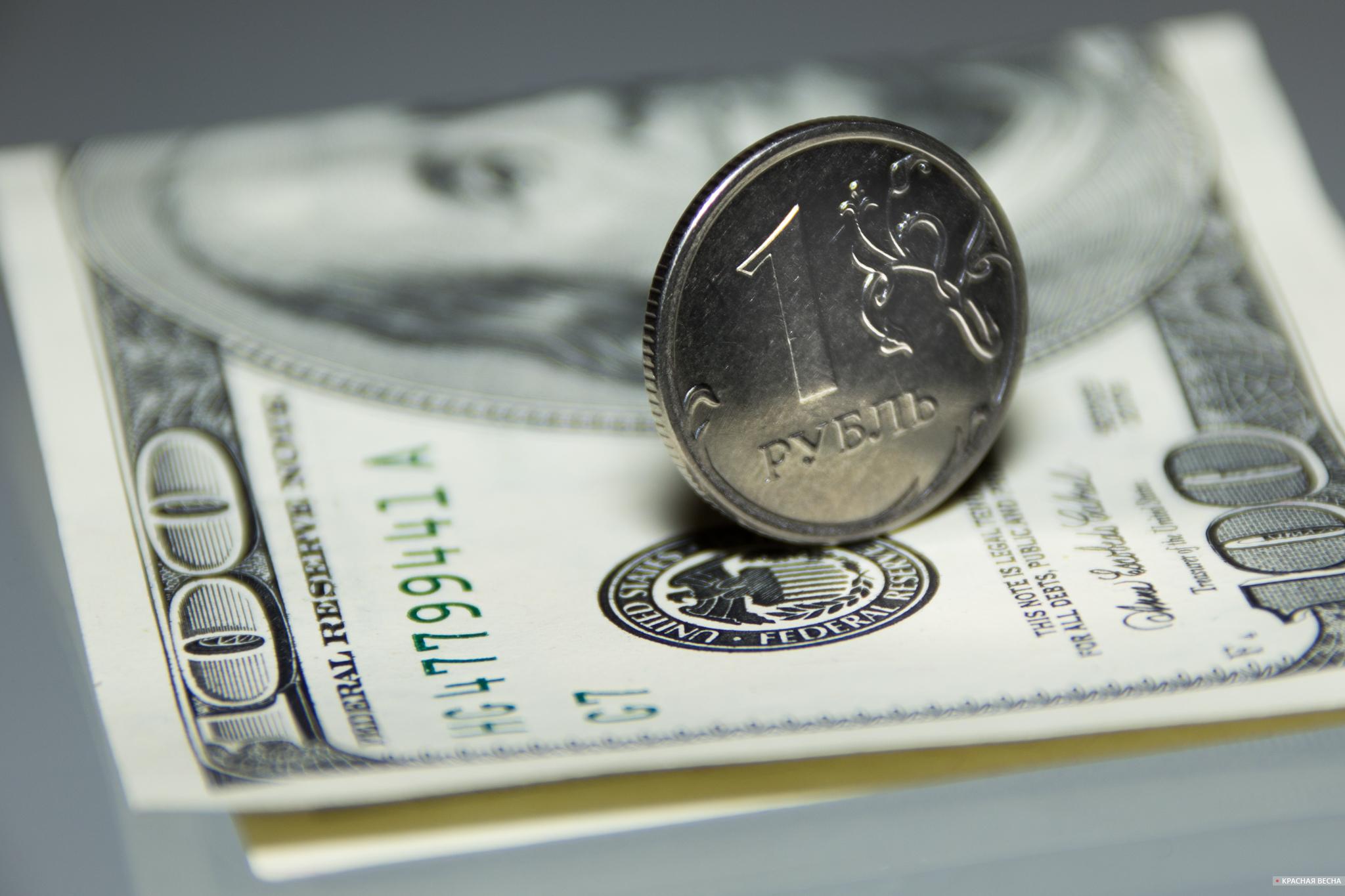 Рубль и доллар [Петр Данилов © Красная Весна ]