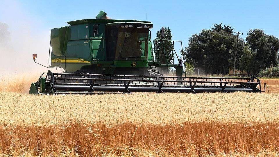 В Краснодарском крае собрали рекордный урожай зерновых