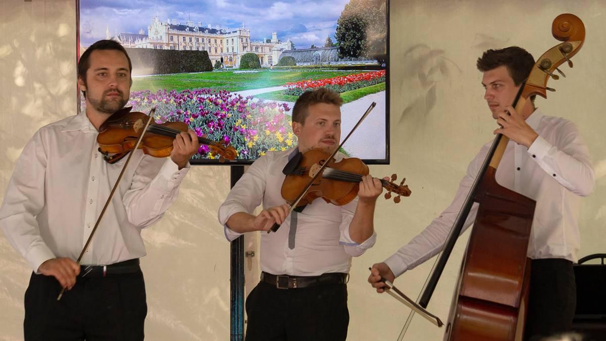Скрипичное трио