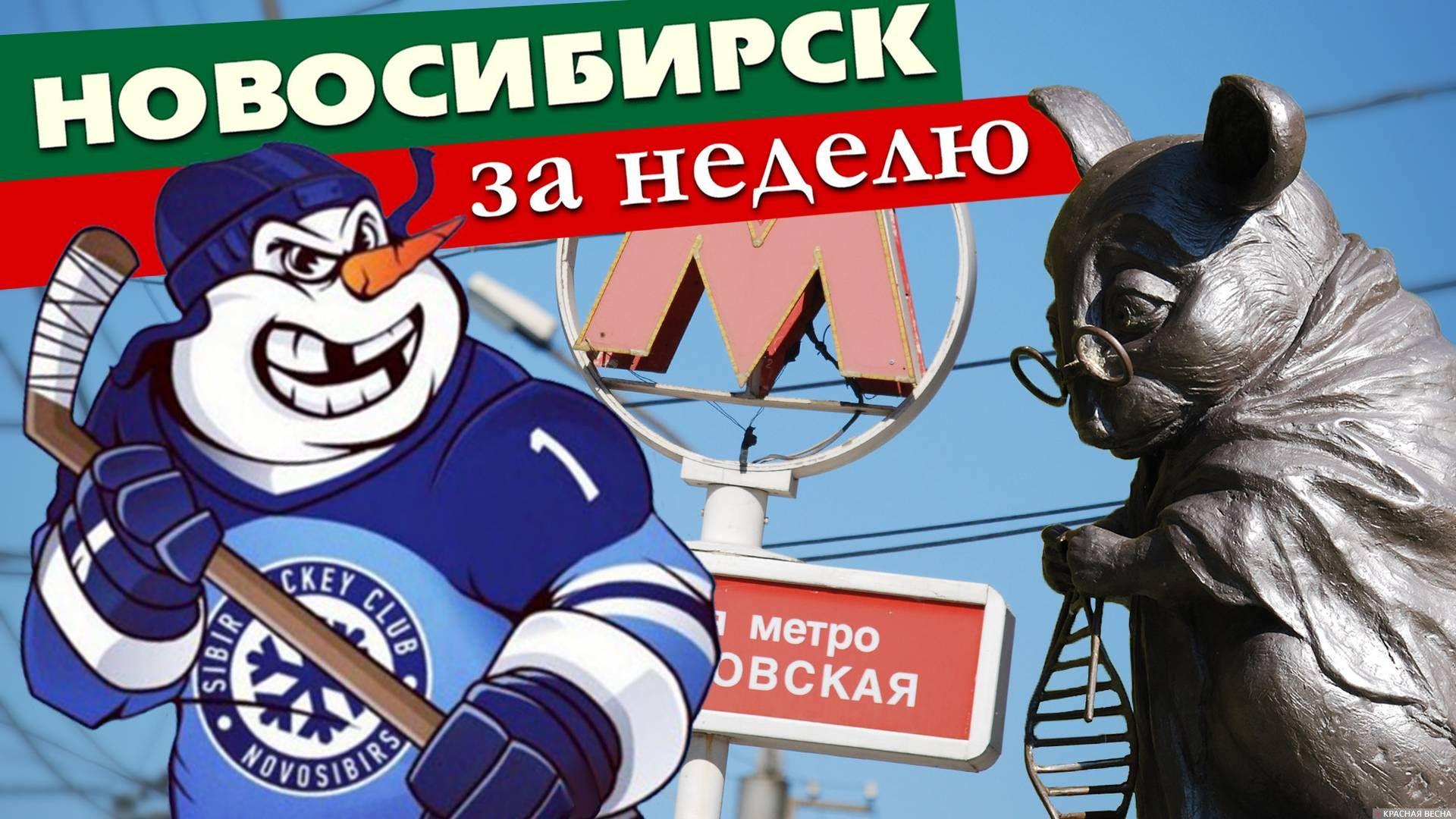 Новосибирск за неделю