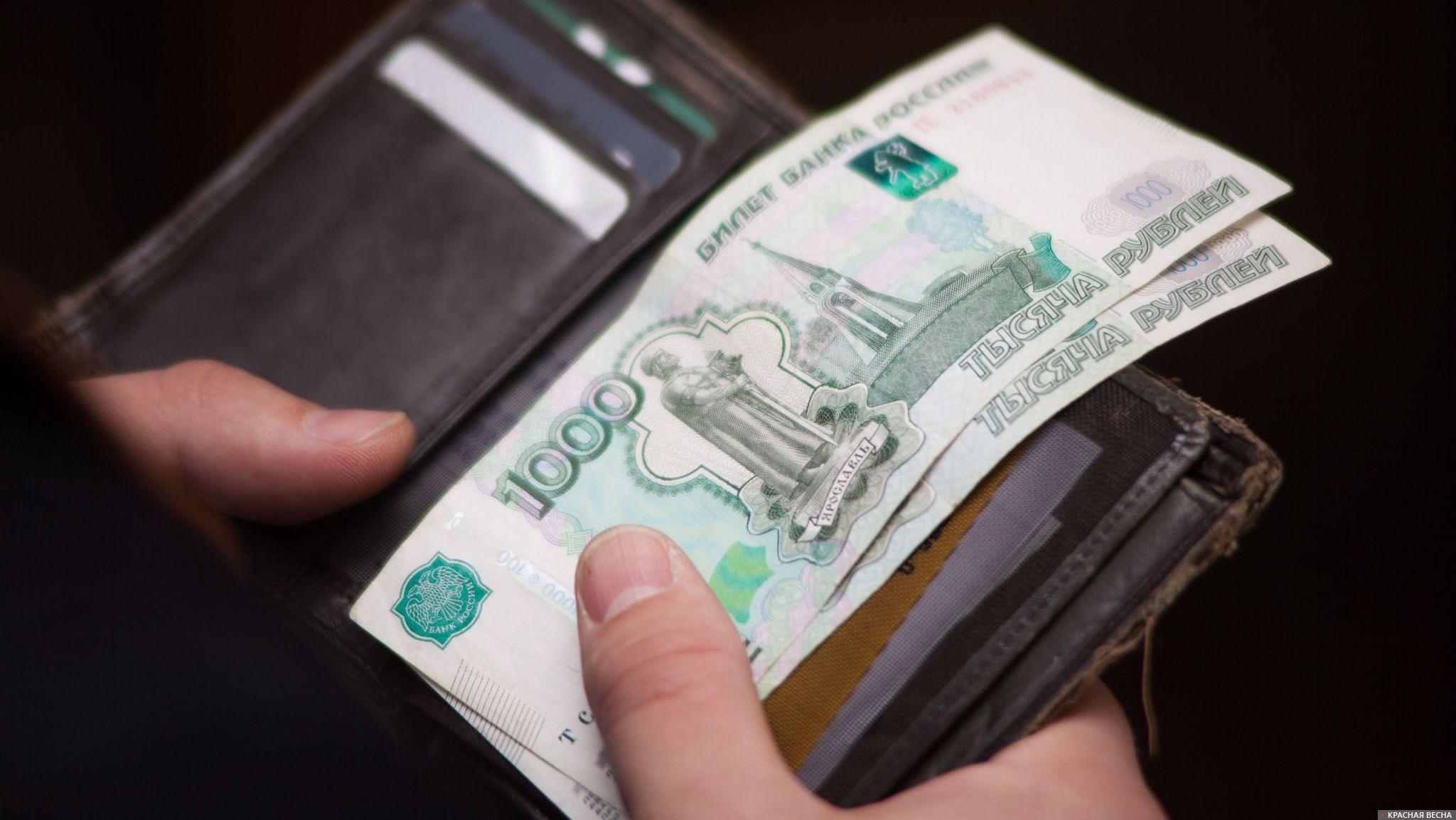 Деньги Рубли Кошелек Владимир Чичилимов