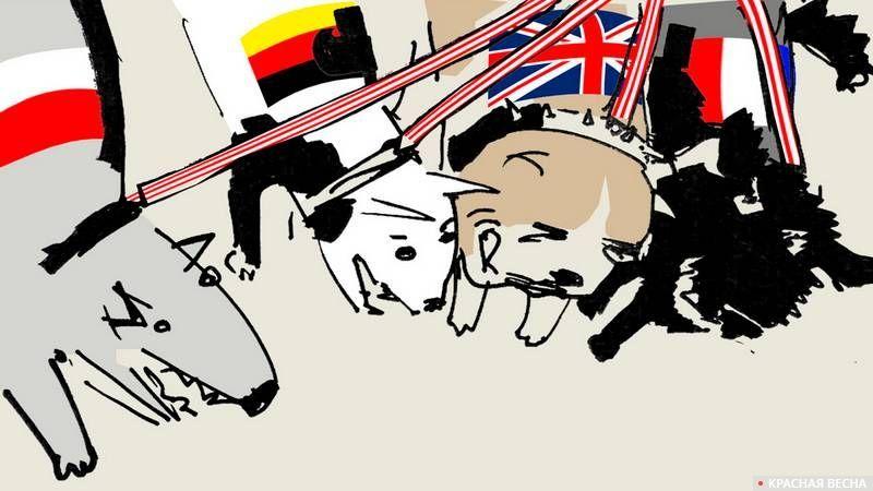 Европейская свора