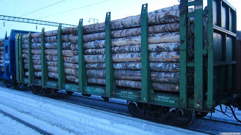 Железнодорожный вагон с лесом
