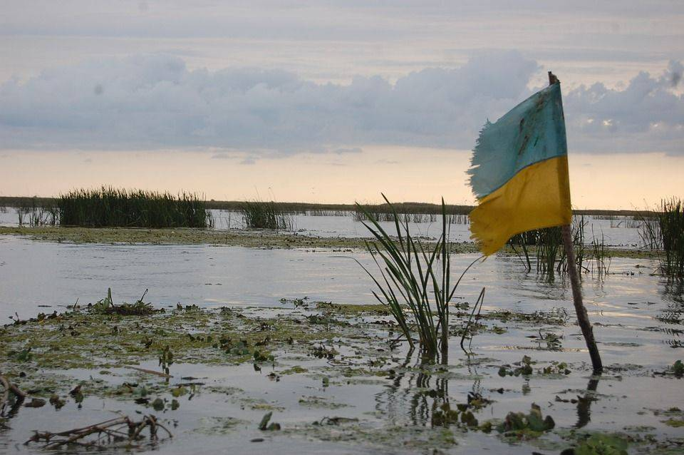 Флаг Украины и болото