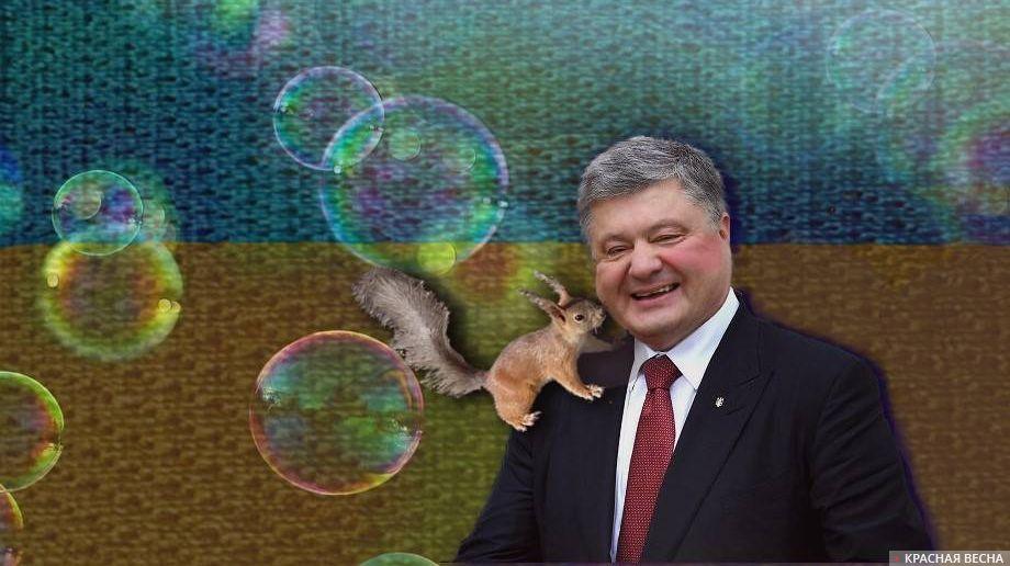 Порошенко. Украина. Порошенко и белка