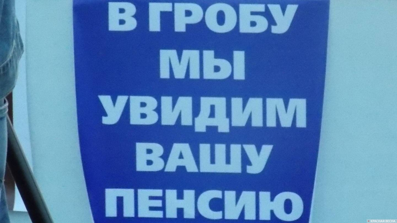 Плакат на митинге в г. Котлас