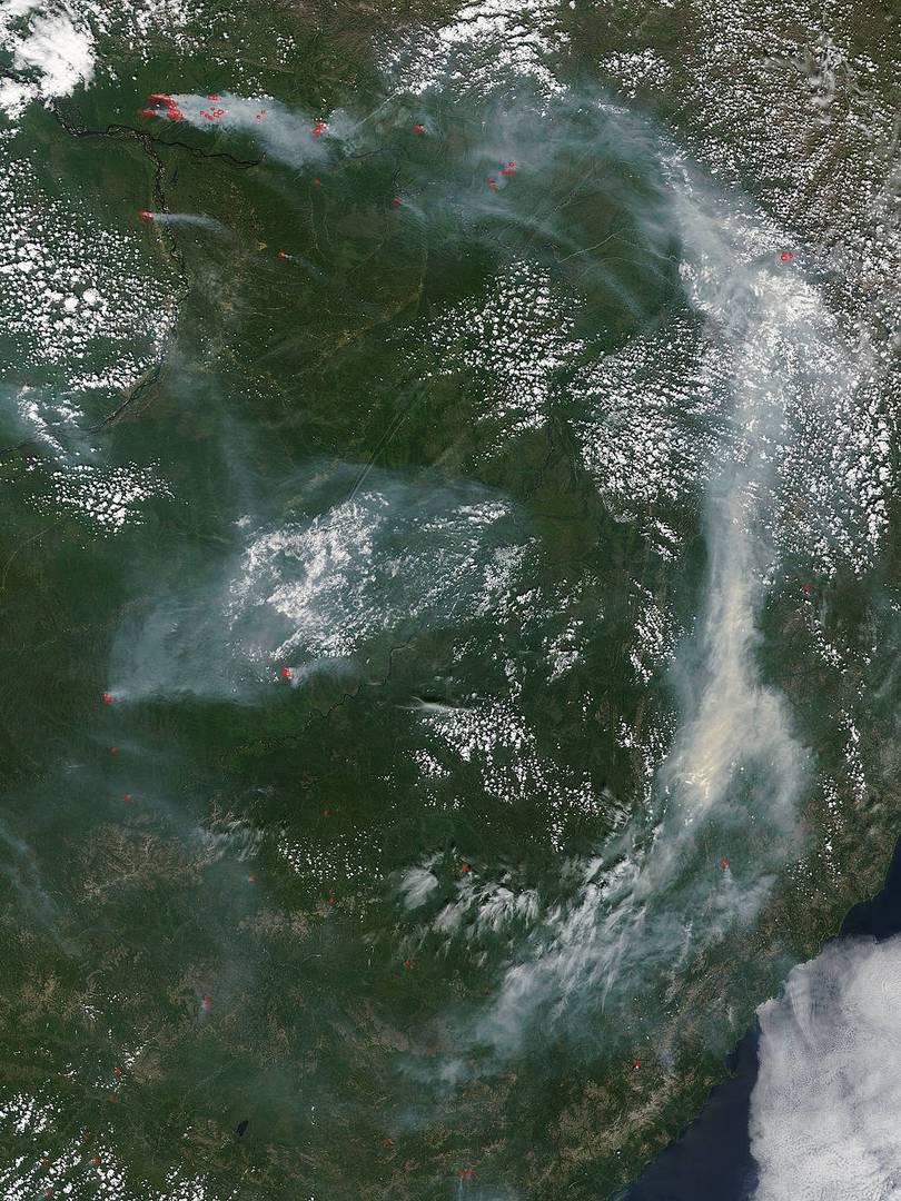 Лесные пожары в России, июль 2017 года