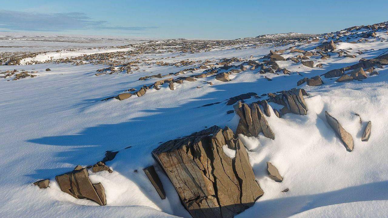 Национальный парк Русская Арктика: северная часть архипелага Новая Земля