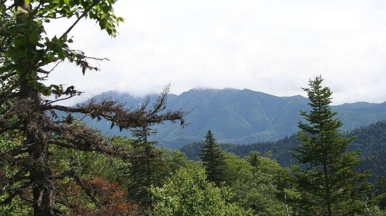 Вид на гору Лопатина (остров Сахалин) с Пиленговского хребта
