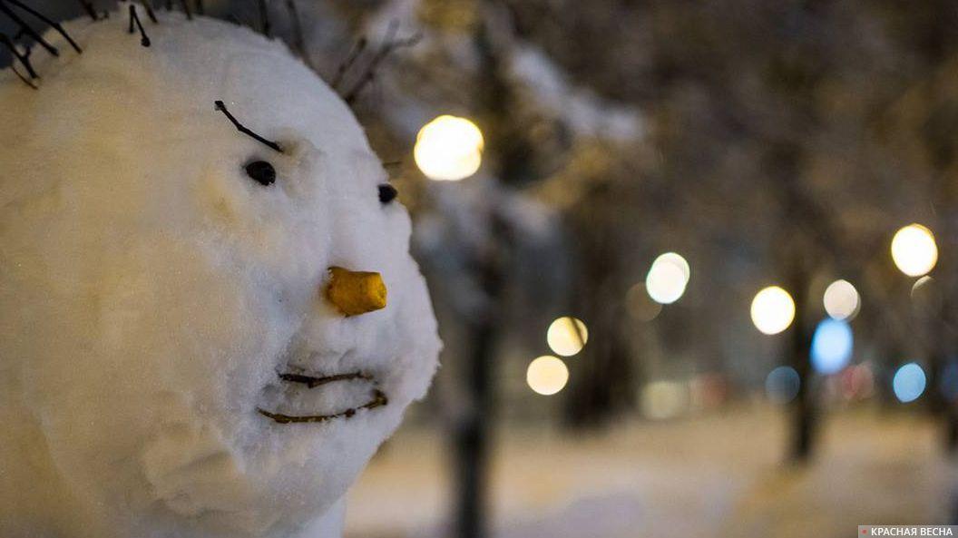 Мокрый снег. Снеговик