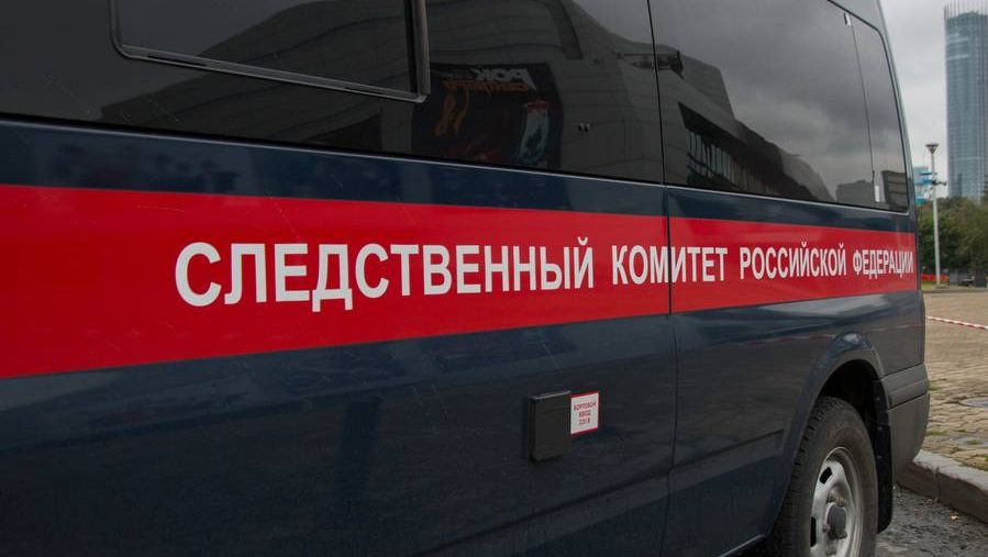 Следственный Комитет Российской Федерации.