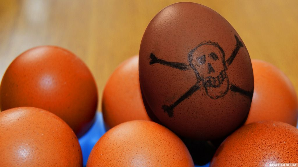 Заражённое яйцо