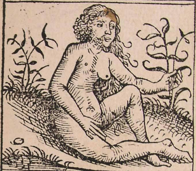 Неизвестный художник. Андрогин. XII век