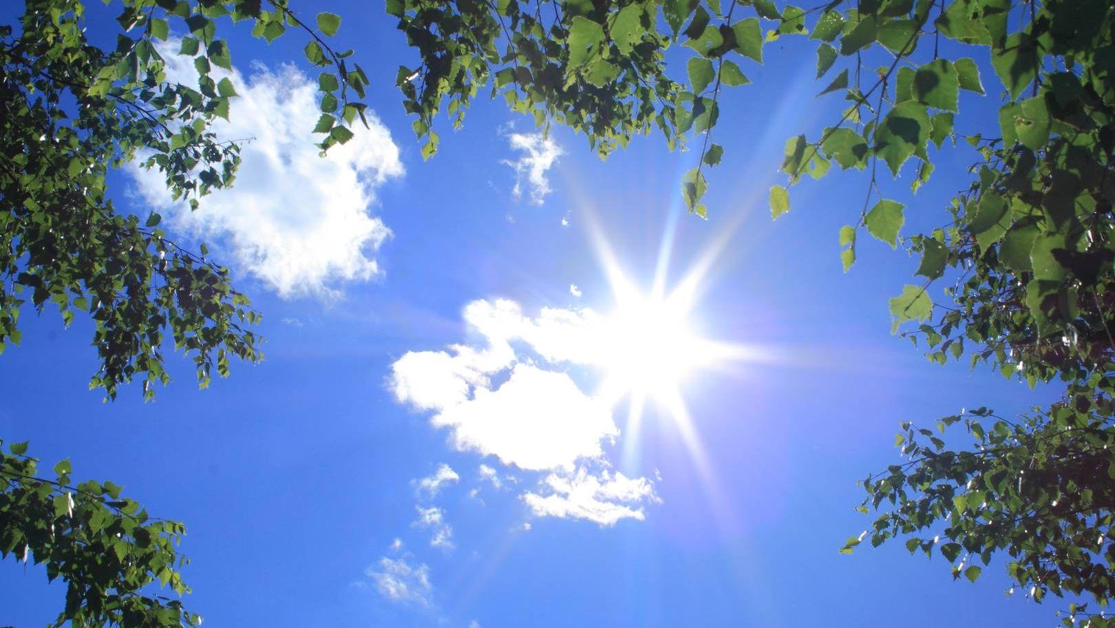 Солнце в небе картинка
