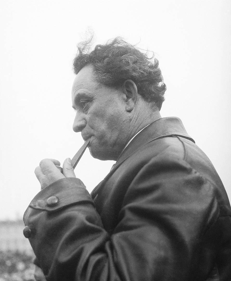 Георгий Димитров. 1930-е