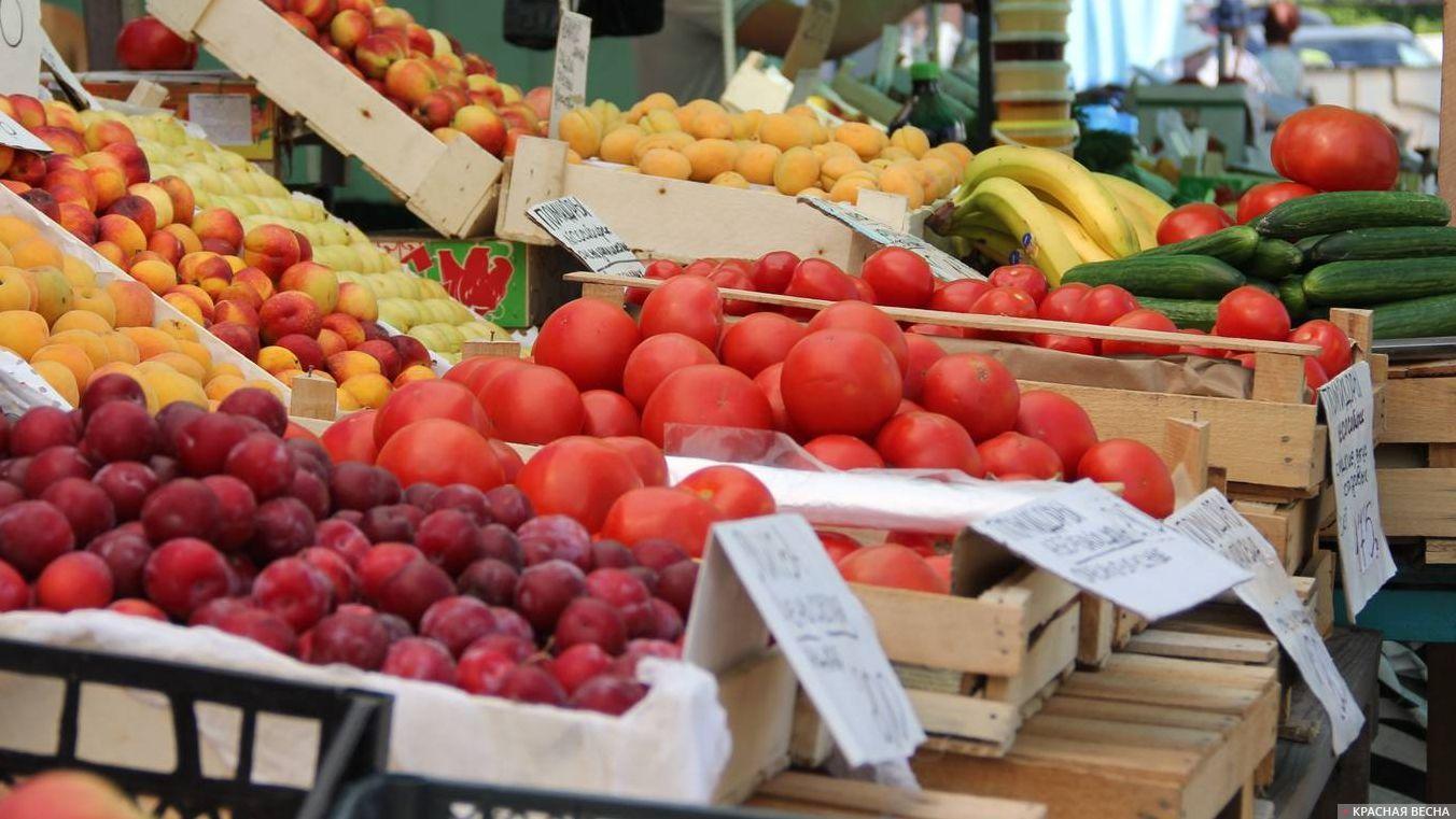 Сельхозорганизации Кубани собрали в минувшем году 85 тыс. тонн тепличных овощей
