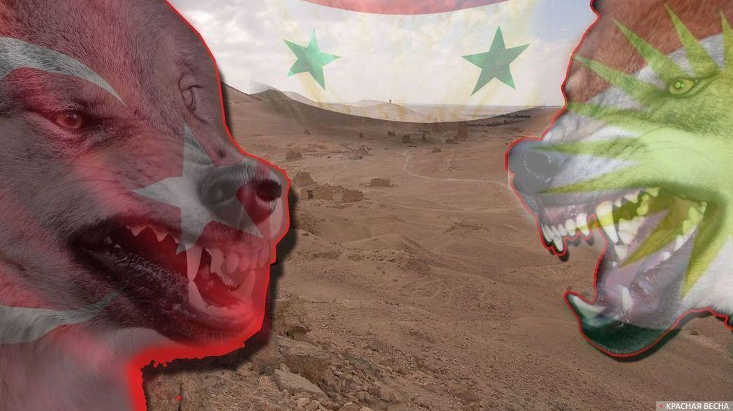 Конфликт Турции и курдов. Сирия