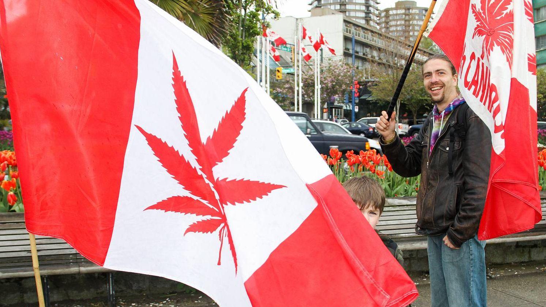 Легализация марихуаны оон будущее марихуаны в россии