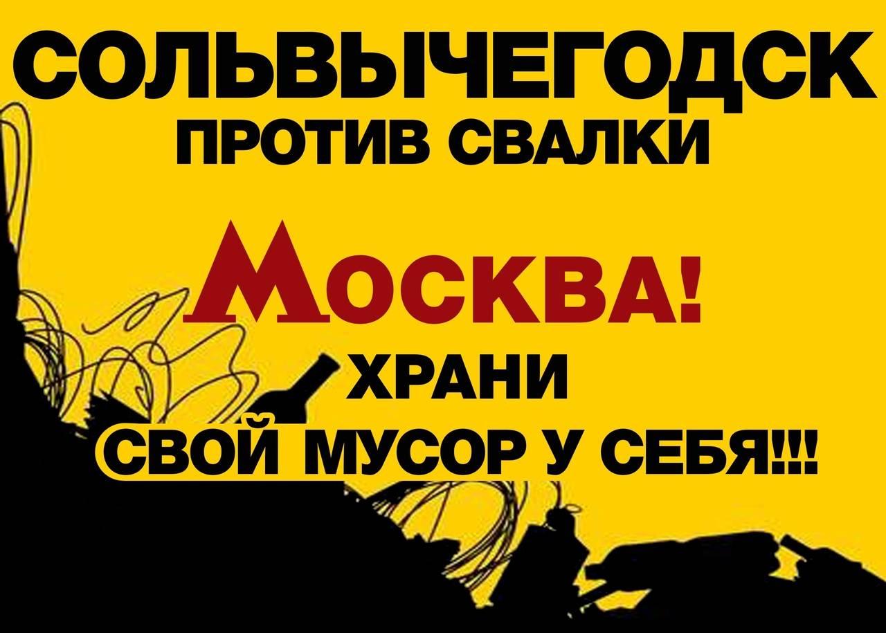 Плакат на митинге 2 декабря 2018 года в Сольвычегодске