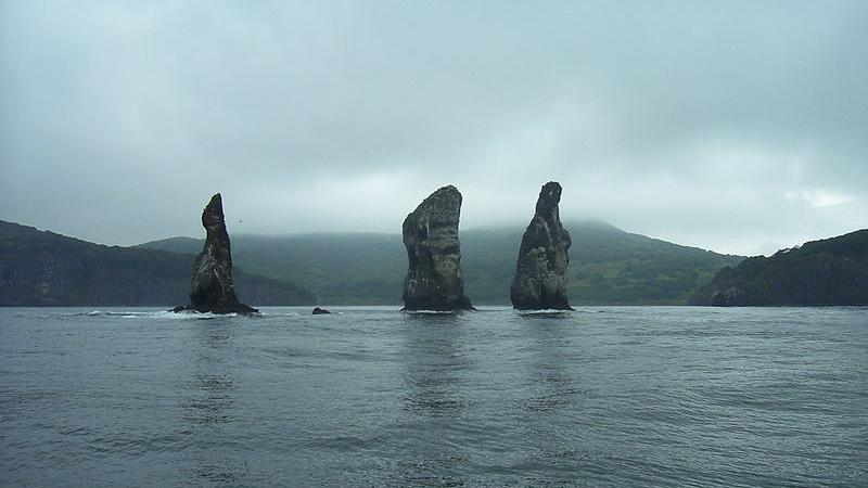 На Камчатке заявили о восстановлении экосистемы в акваториях полуострова