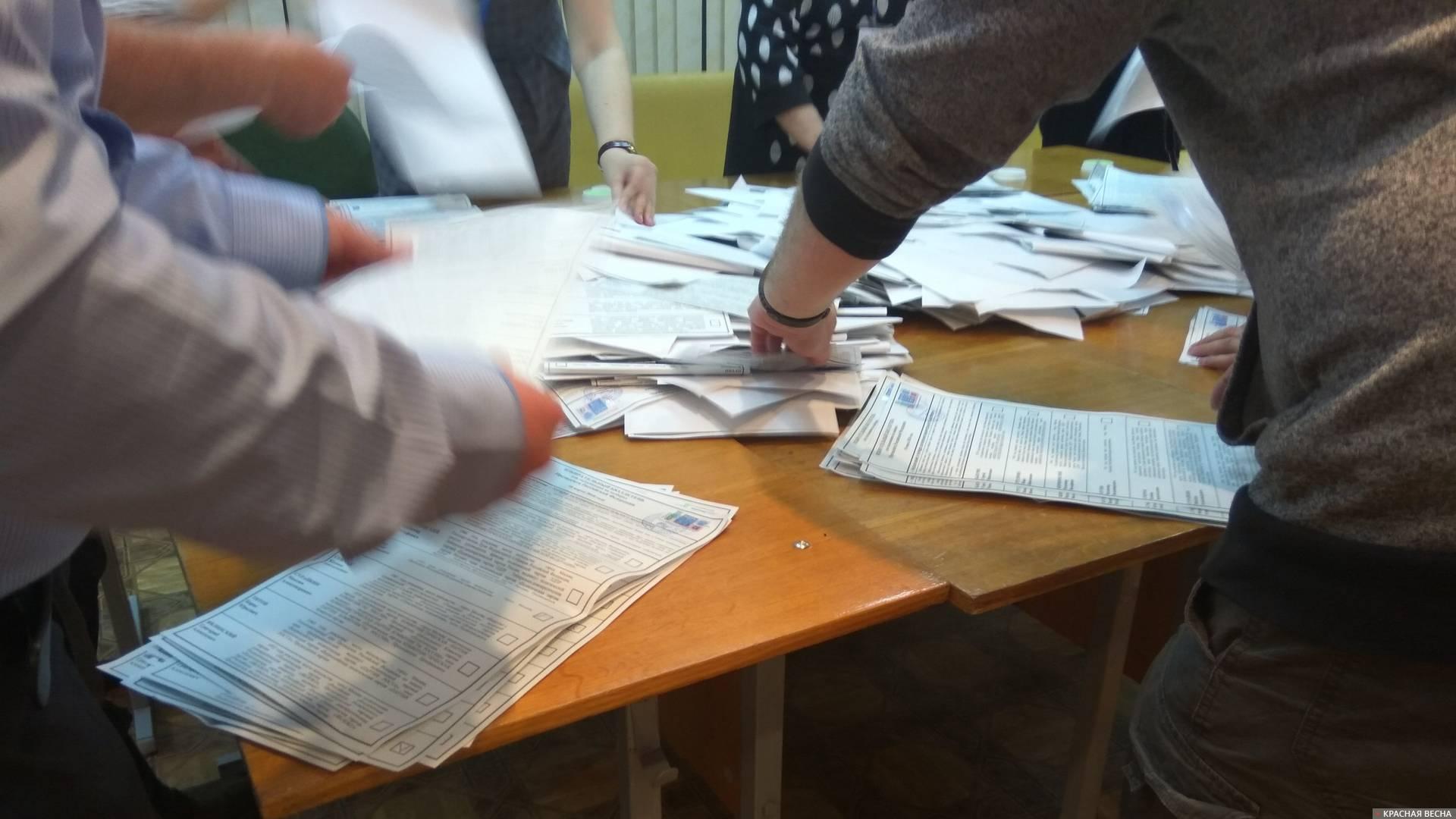 Глава ГИК Чечина посоветовала прекратить возмущаться нарушениями на выборах