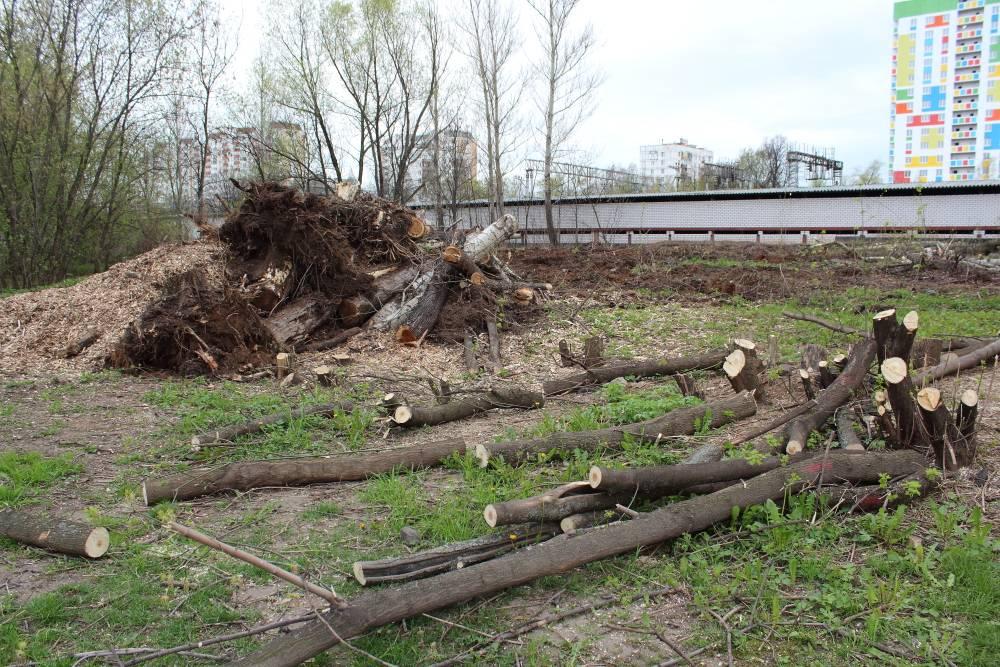 улица Красный Казанец, задняя стенка гаражей, вырубка ПК № 87