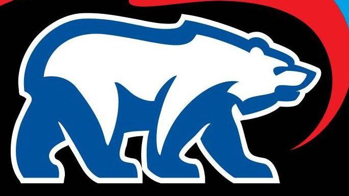 Логотип партии « Единая Россия».Фрагмент