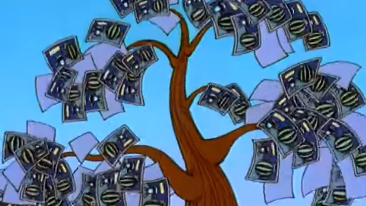 «Денежное» дерево