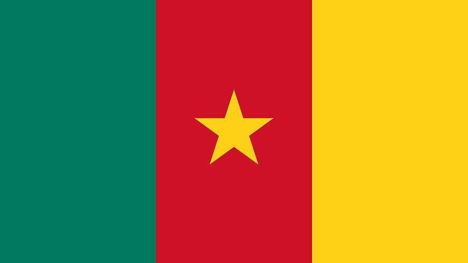 камерун, флаг