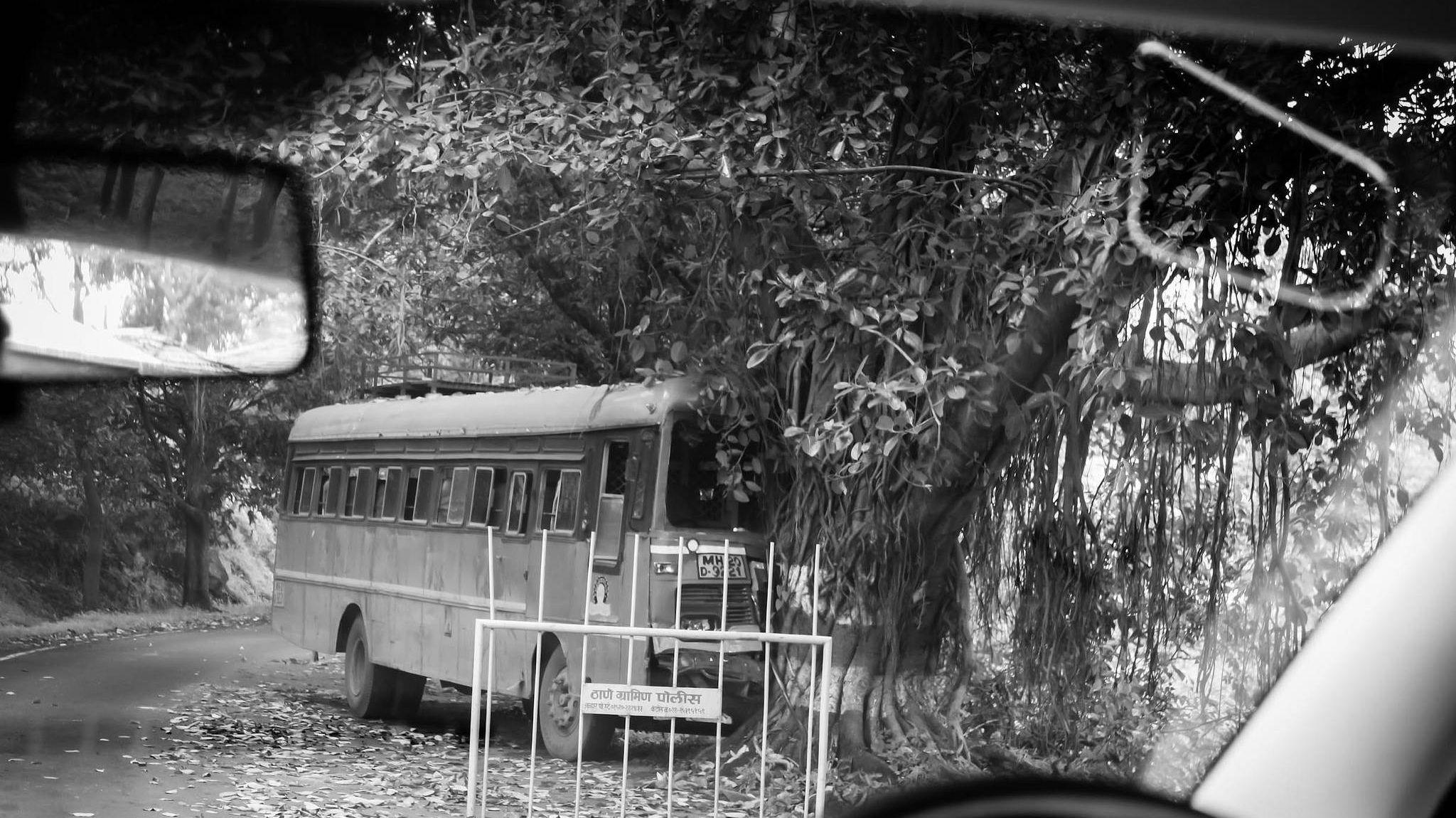 Столкновение автобуса с деревом