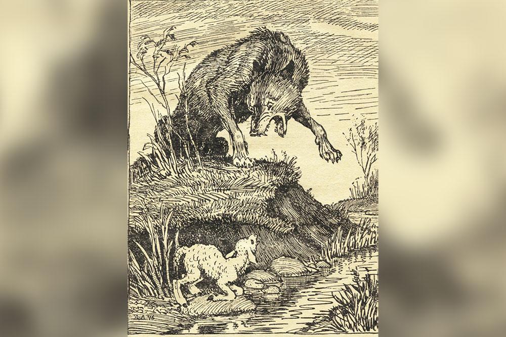 Волк и ягненок раскраска
