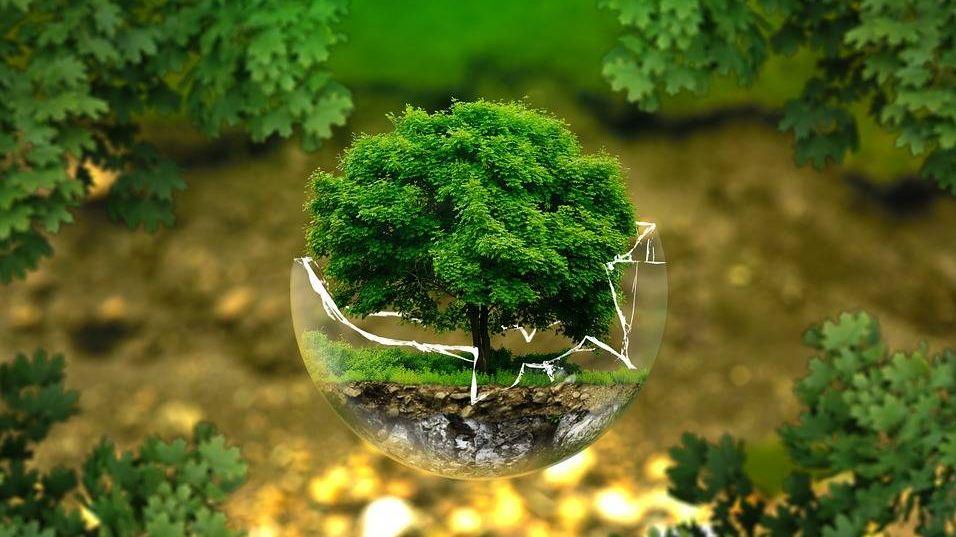Рациональное природопользование