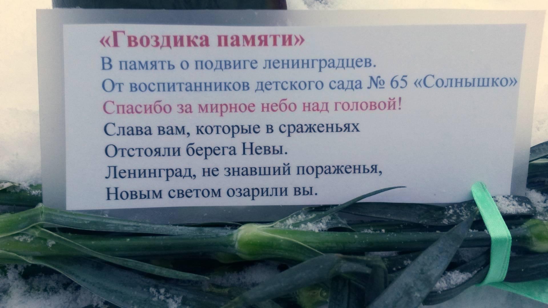 Букет гвоздик от воспитанников детского сада №65