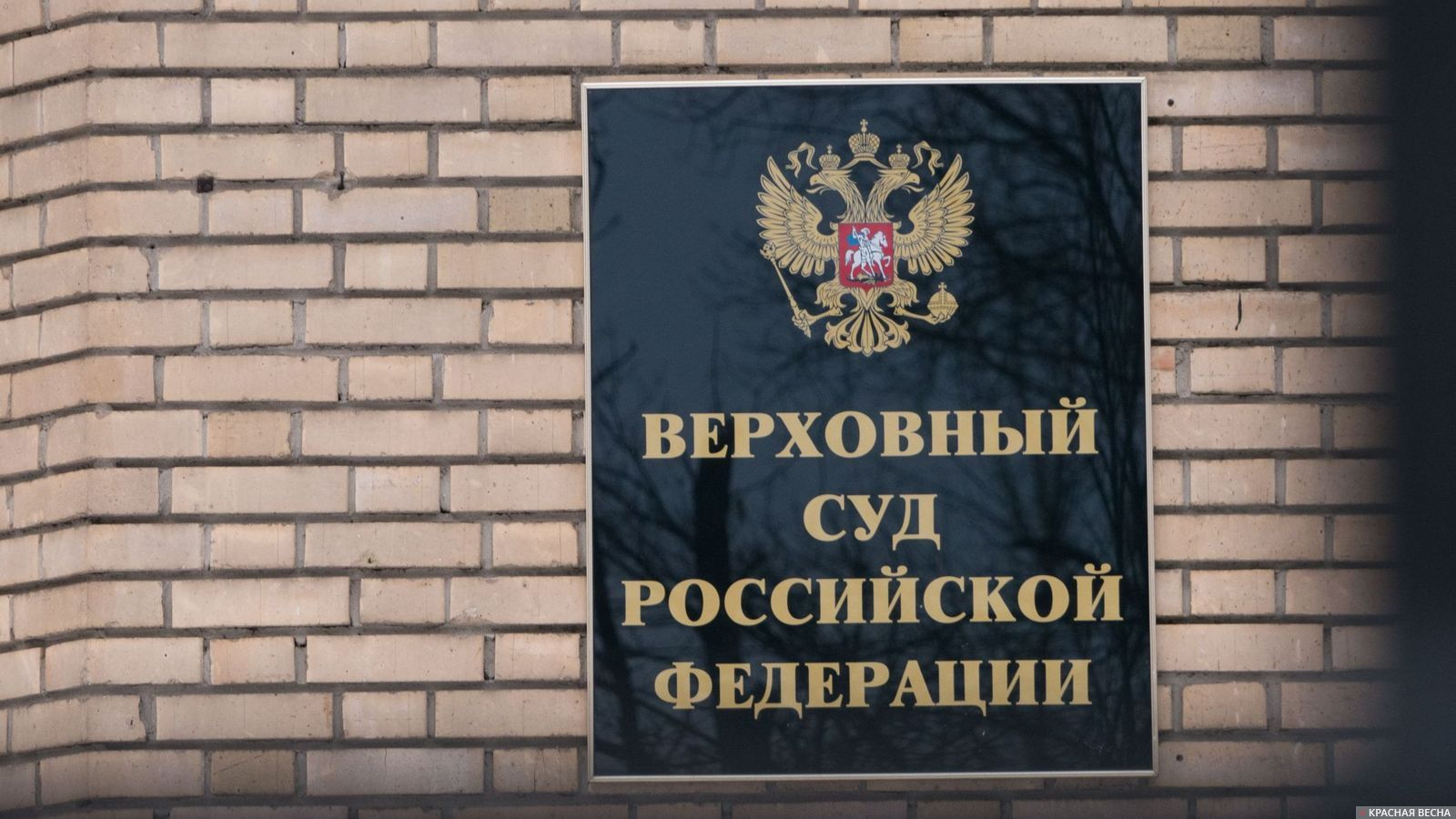 Генпрокуратура поддержала ЦИК вотказе зарегистрировать Навального