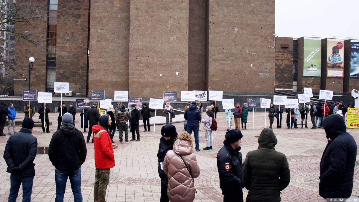 Массовый пикет против закона о СБН в Ростове-на-Дону
